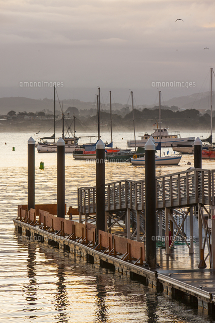 pier and yachts monterey california united states of america