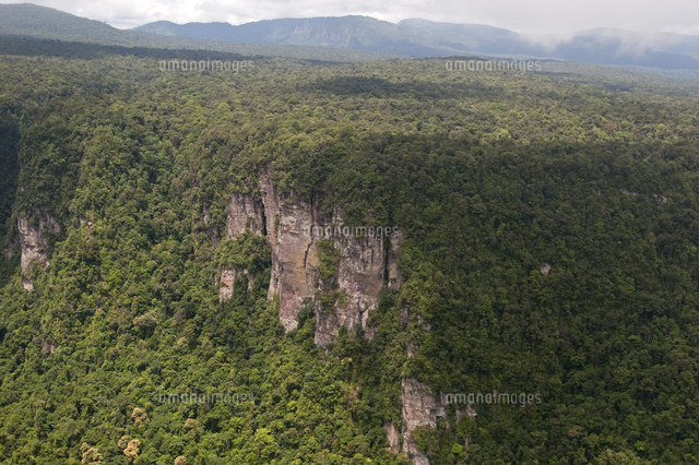 aerial view of mountainous rainforest in guyana south america