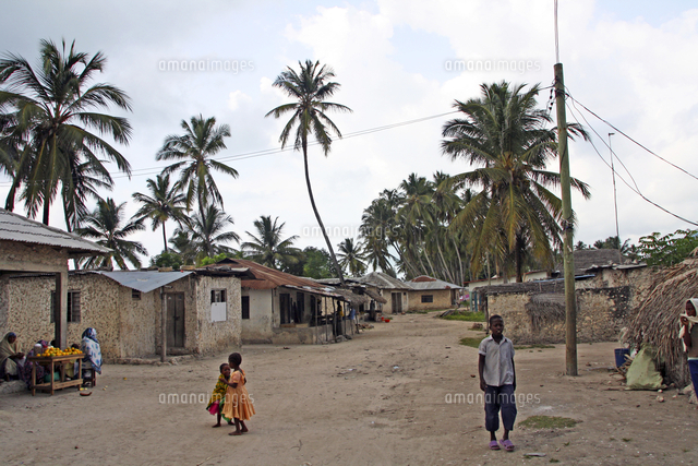 coconut trees and thatched houses in zanzibar island tanzania east