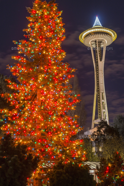 night view of space needle and christmas tree at seattle center