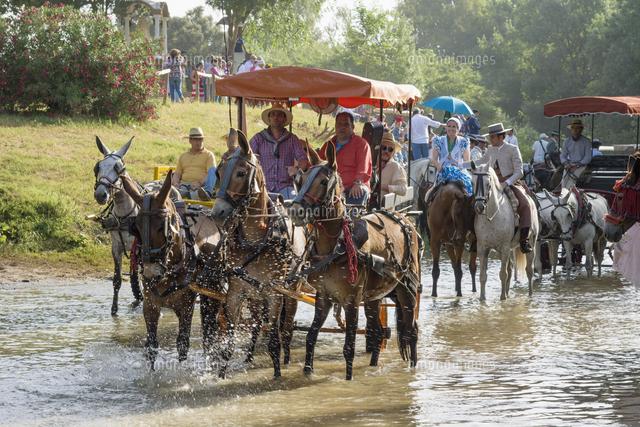 pilgrims in horse drawn carriages passing the quema river el rocio