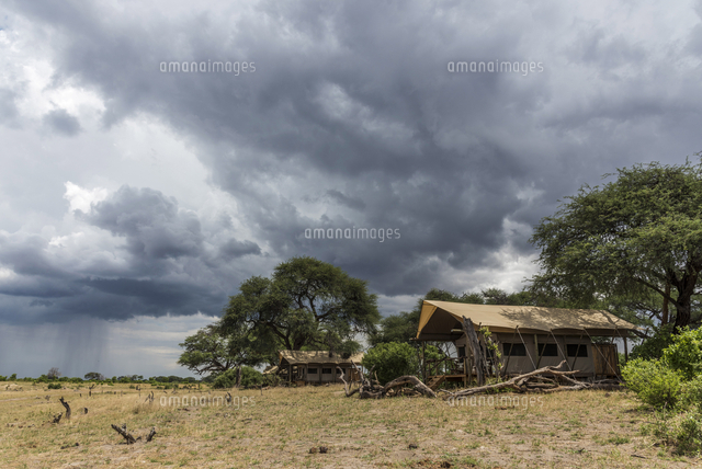 Africa, Zimbabwe, Hwange National Park. Tented camp in the bush.