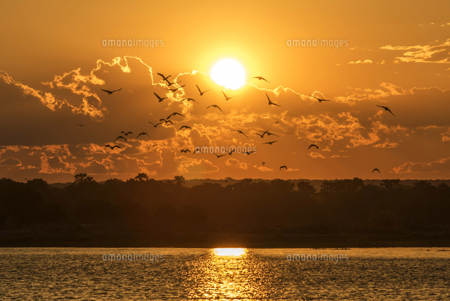Africa, Zimbabwe, Matabeleland north. Sunset over the Zambezi near to Victoria Falls