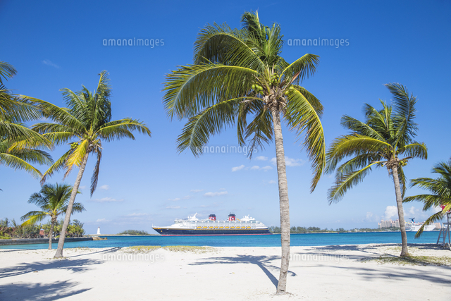 Caribbean, Bahamas, Providence Island, Nassau, Palm trees on white sand beach