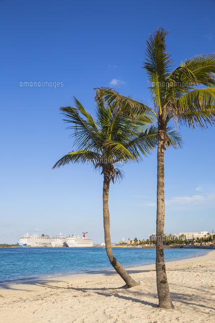 Caribbean, Bahamas, Providence Island, Nassau, Palm trees on white sand beach, with cruise ship in d