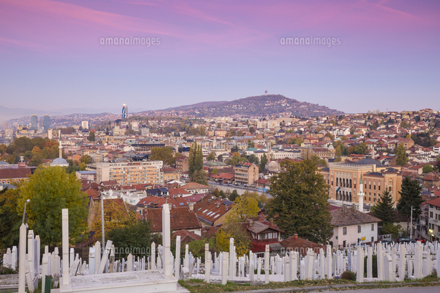 Bosnia and Herzegovina, Sarajevo, View of Alifakovac graveyard (where Muslim foreigners are buried)