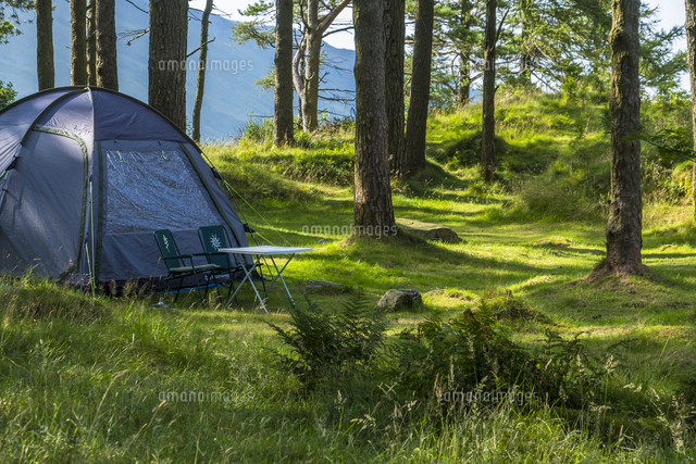 camping in a woodland glade in snowdonia 20089002665 写真素材
