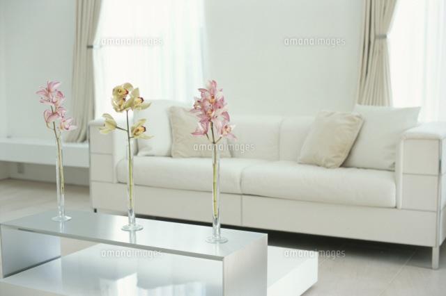 3輪の花を置いたテーブルや白いソファのある部屋 21044000175 | 写真素材・ストックフォト・画像・イラスト