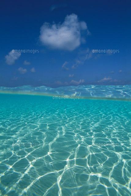 浅瀬の海[21051000272]| 写真素...