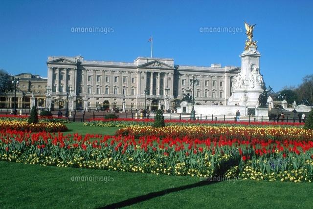 london buckingham palace 22214003423 写真素材 ストックフォト