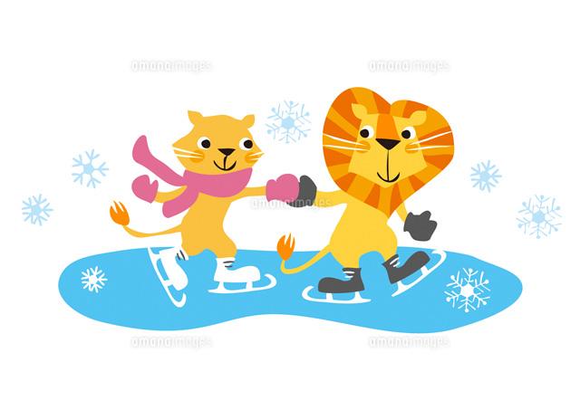 アイススケートをするライオン22276005921の写真素材イラスト素材