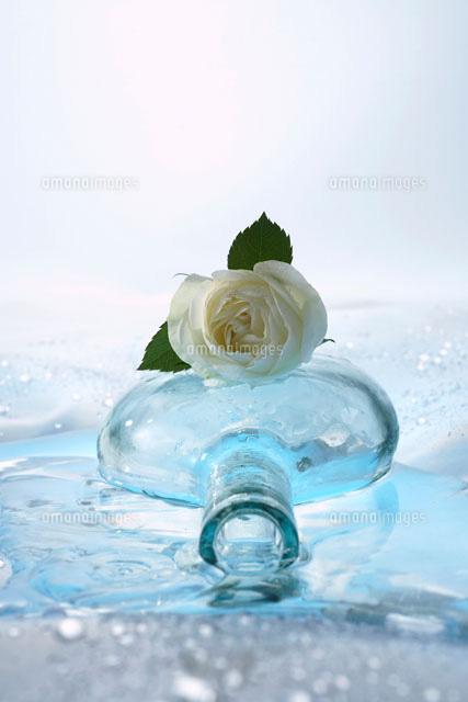 バラとガラス瓶22321023402の写真素材イラスト素材アマナイメージズ