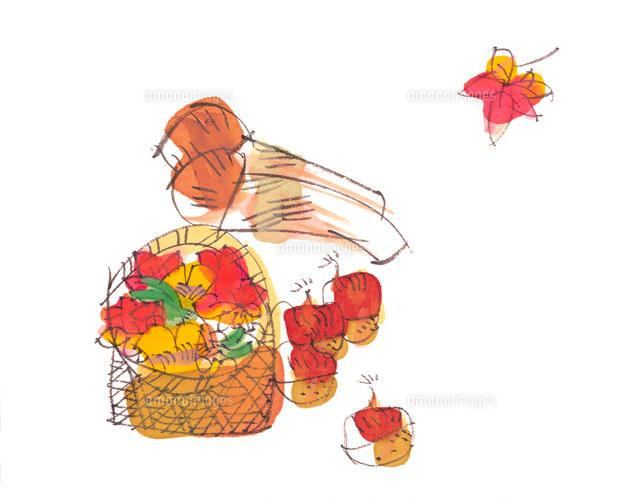 松茸と木の実と枯れ葉 イラスト22333000030の写真素材イラスト素材