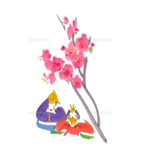 桃の花と雛人形 イラスト22333000037の写真素材イラスト素材アマナ
