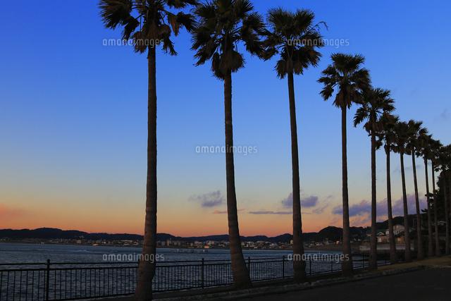 江ノ島と富士山 朝焼け 逗子マリーナから撮影(c)HISASHI KAMAGATA/SEBUN PHOTO