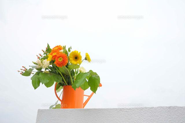 オレンジ色のジョーロと花22361004284の写真素材イラスト素材