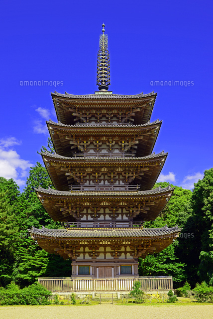 京都府 醍醐寺 五重塔22456002844の写真素材イラスト素材アマナ