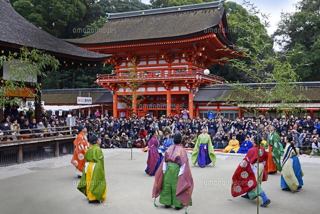 京都府 下鴨神社 蹴鞠始め22456003235の写真素材イラスト素材