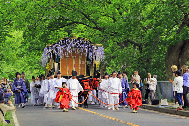 加茂街道 葵祭 御所車22456003607の写真素材イラスト素材アマナ