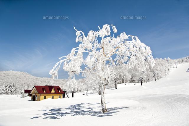 蔵王温泉スキー場パラダイスゲレンデ22548000727の写真素材イラスト
