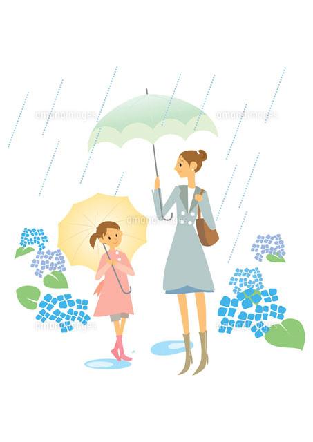 紫陽花と傘をさす母と女の子 イラスト22933001318の写真素材イラスト