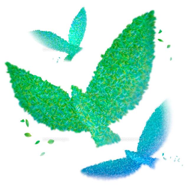 葉で作った緑の鳥 3羽22933002002の写真素材イラスト素材アマナ