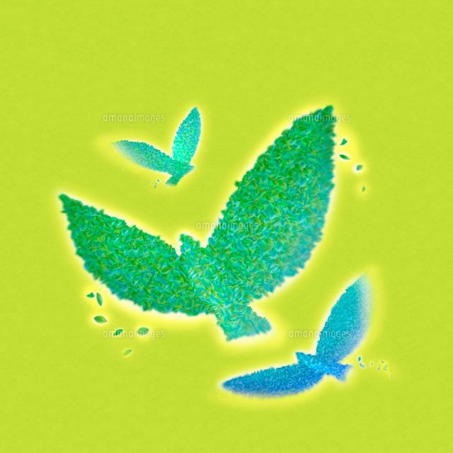葉で作った緑の鳥 3羽22933002003の写真素材イラスト素材アマナ
