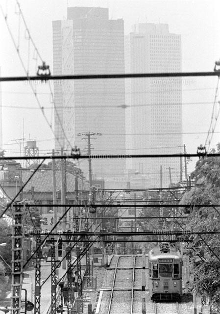 東京 都電荒川線 1974年[22973000835]の写真素材・イラスト素材 ...