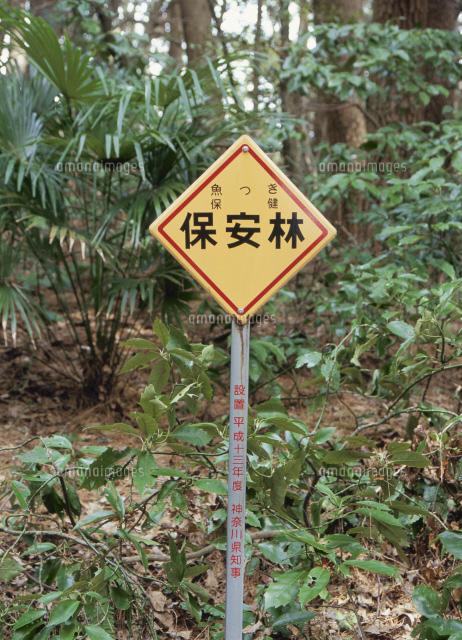 魚つき保安林を表した標識[25167...