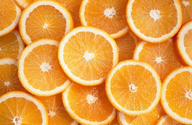 オレンジ スライス[25330005563]...