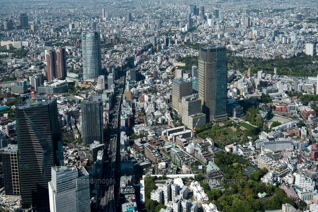 六本木六本木ヒルズ東京ミッドタウン周辺25397014992の写真素材