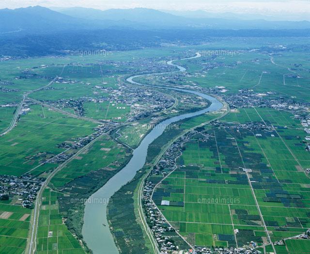 信濃川と水田[25436000778]の写...