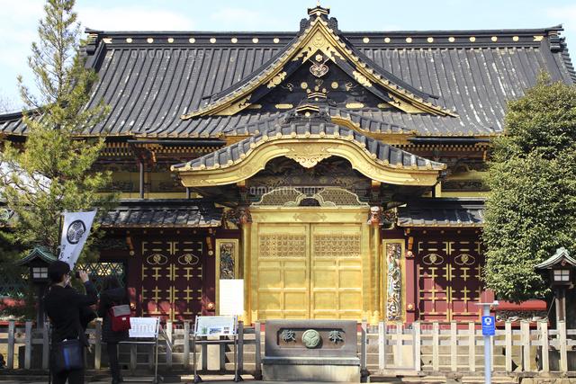 上野東照宮唐門と権現造の拝殿25531001625の写真素材イラスト素材