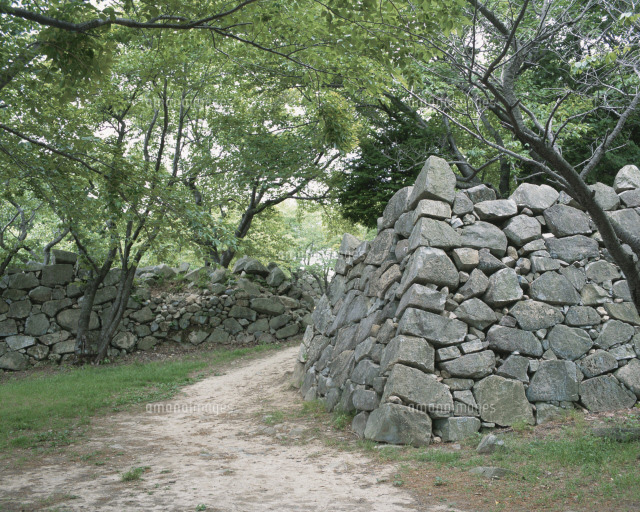 西生浦倭城[25620000894]の写真...
