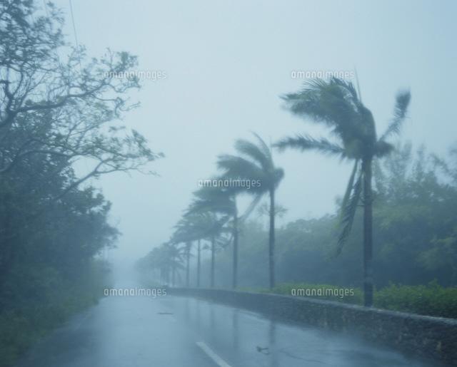 暴風雨(台風)[25623008383]の...