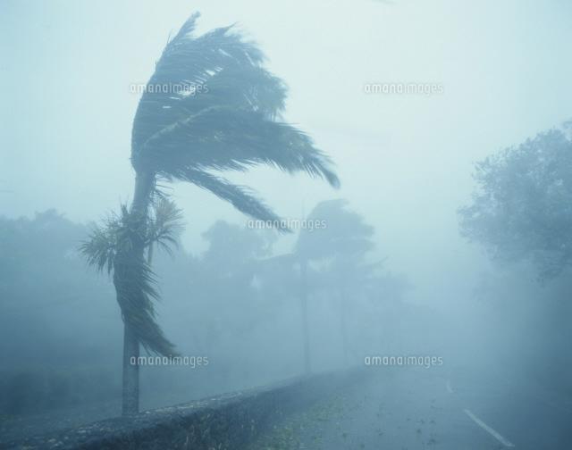 暴風雨[25623008385]の写真素材...