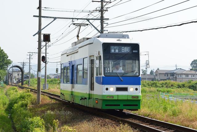 福井鉄道の800形電車[2566800250...
