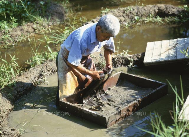 「大島紬 泥染め」の画像検索結果