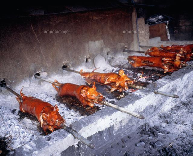子豚の丸焼き25893000490の写真素材イラスト素材アマナイメージズ