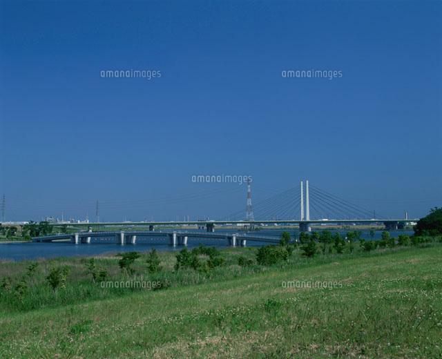 彩湖と幸魂大橋[25977001016]| ...