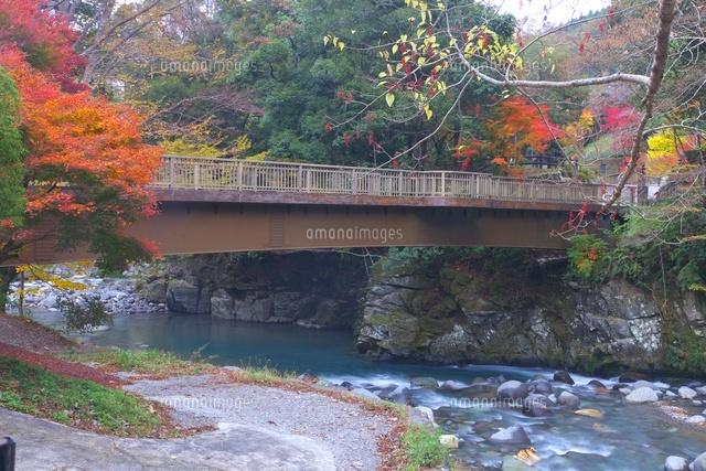 湯ヶ島温泉 出会い橋の女橋[2598...