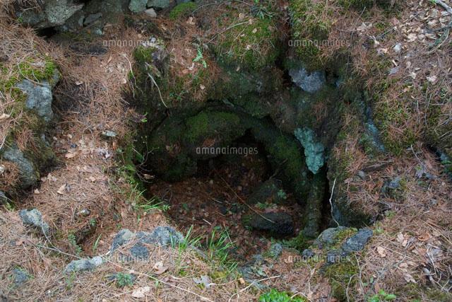 溶岩水蒸気 噴気孔型溶岩樹形[25...