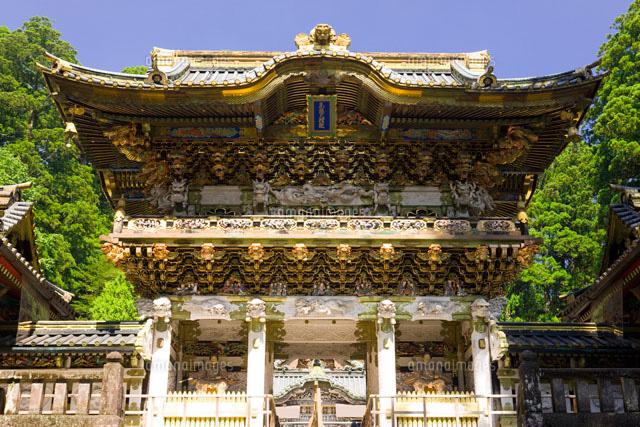 日光東照宮の陽明門26033001208の写真素材イラスト素材アマナ