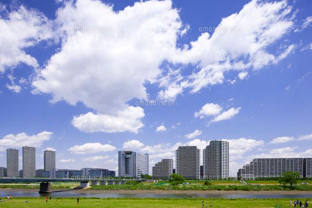 多摩川河川敷 ガス橋下流[260330...