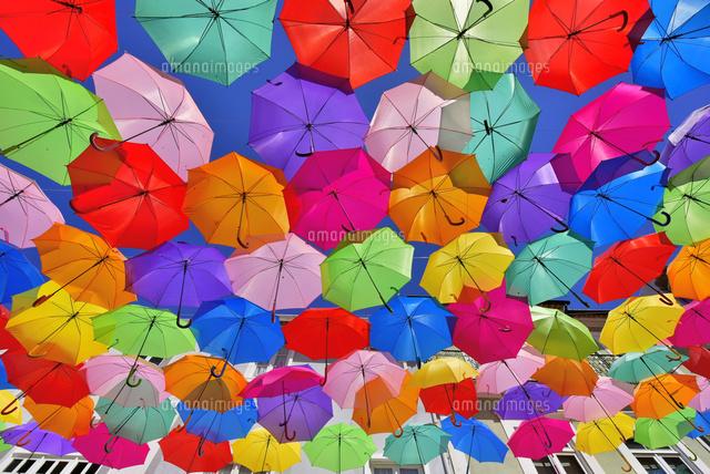 カラフルな傘が並ぶ街[260820006...