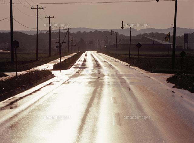 朝の道 サロマ湖公園線 道道442[...