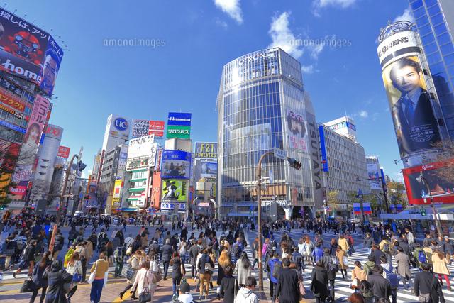 冬の渋谷スクランブル交差点[26121032648]の写真素材・イラスト素材 ...