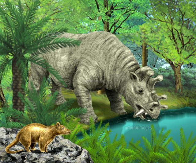 哺乳類の進化 恐竜絶滅後の新生代以降、地球で繁栄した真獣類 ウィン ...