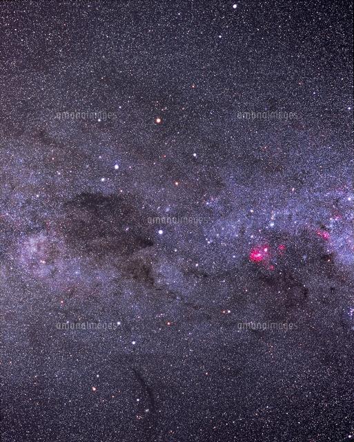 南十字星とコールサック[3226800...