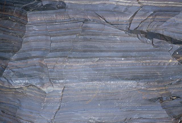 粘板岩(変成岩)と鉄鉱石頁岩(...